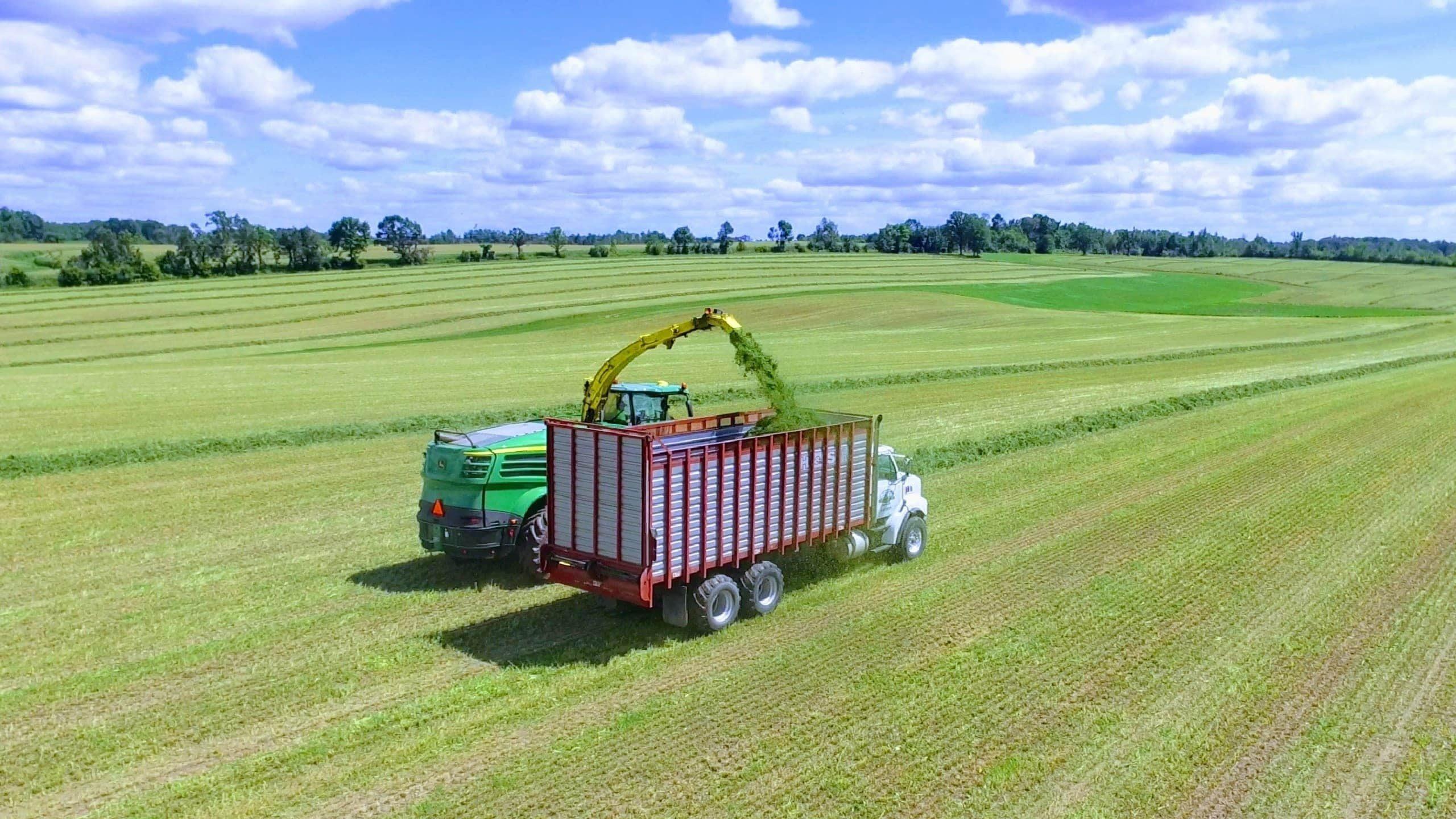 Why Grow Alfalfa